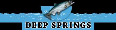 http://www.deepspringstc.com/wp-content/uploads/2012/09/Deep-Springs-Logo1.png